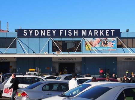 Northside Seafood Suppliers